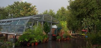 Brockwell Greenhouses Confirm New Opening Arrangements