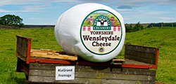 Cracking cheese, Gromit! Wensleydale waste to heat 4,000 homes